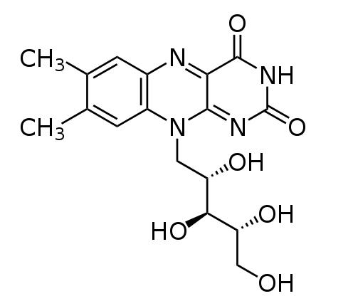 Funciones de cada una de las vitaminas fitness, Vitamina B2