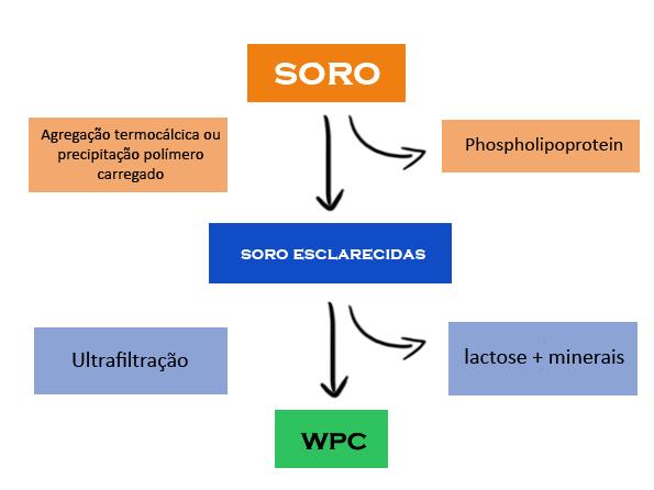 Proteína fitness de soro de leite ou Whey Protein