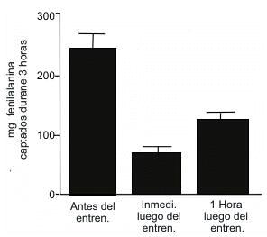 Figura 1. Proteina fitness estudio