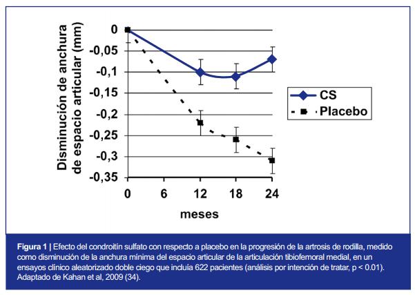 Ayudas Fitness: Sulfato de Condroitina 2