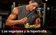 dietasana1