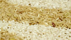 arroz-628x356